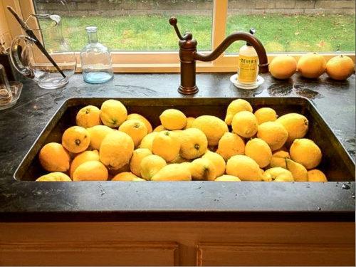 Soapstone-Sinks-14